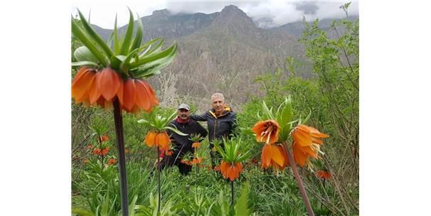 Hakkarili Dağcılardan Çiçek Vadisine Ziyaret
