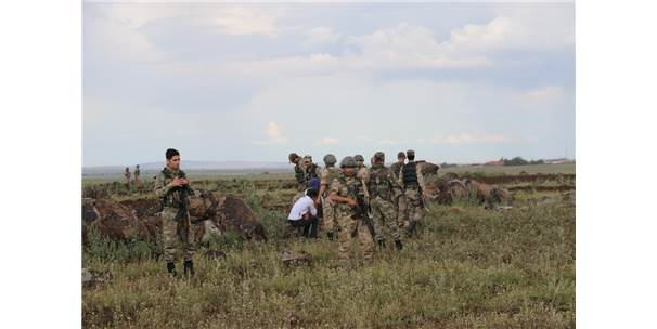 Diyarbakır'da Arazi Kavgası: 5 Ölü