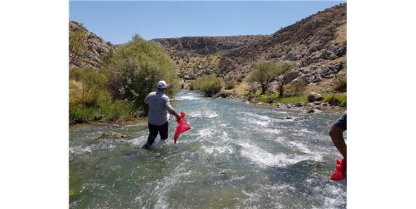 Başkan Güven Hurman Nehrinde Temizlik Yaptı