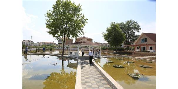 Türkiye'nin İlk Ve Tek Nilüfer Sanat Parkı Bolu'da Açılıyor