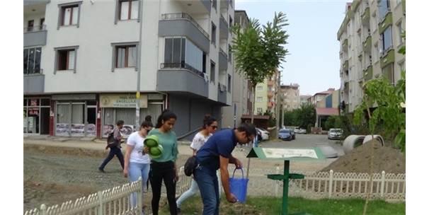 Iğdır'da Sokak Hayvanları Unutulmadı