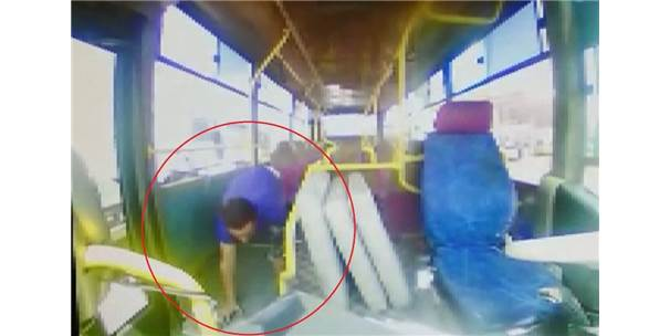 Park Halindeki Halk Otobüslerine Giren Hırsızlar, Sürücüleri İsyan Ettirdi
