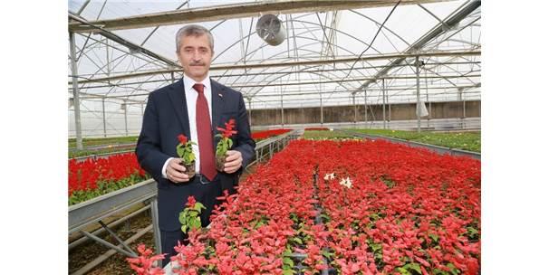 Şahinbey'de 606 Park Vatandaşın Hizmetine Sunuldu