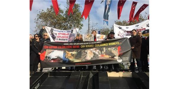 Hayvanseverlerden Hayvanları Koruma Kanunu'na Tepki