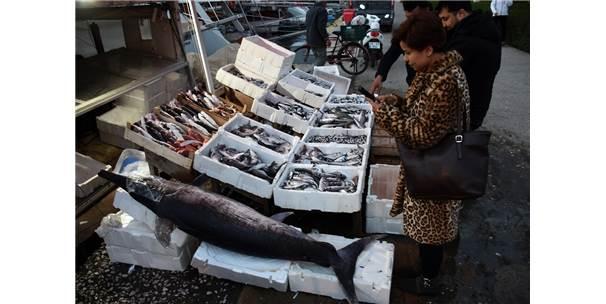 Balıkçıların Ağına 70 Kiloluk Kılıç Balığı Takıldı