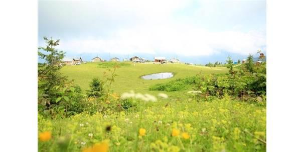 Karadeniz'in Yeni Gözdesi Badara Yaylası