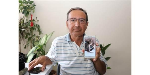 Kayıp Kedisinin Bulunması İçin Polise Başvurdu