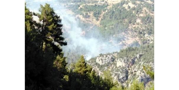 Tarsus'ta Orman Yangını