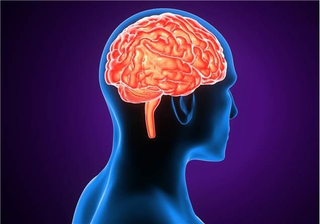 Zeka ve akıl arasında ne fark var?