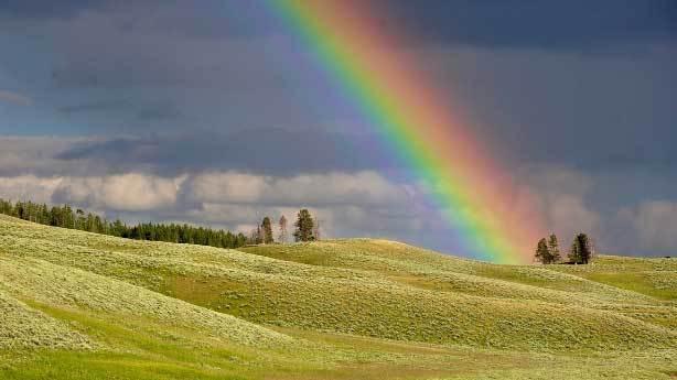 Gökkuşağında gerçekte kaç renk vardır?