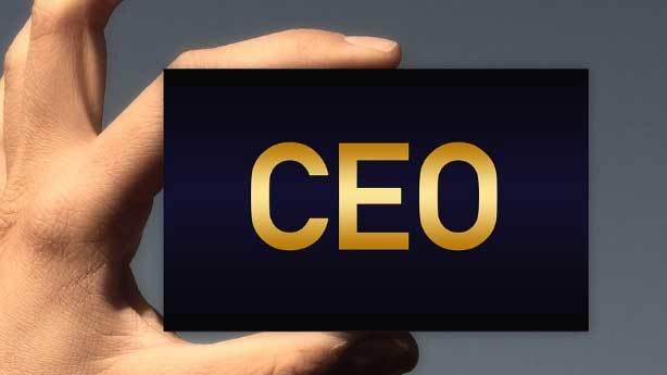 CEO nedir?