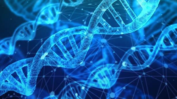 Yaşamın temeli RNA ve DNA'ya dayanmıyor mu?