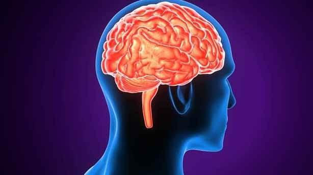 Akıl ve zeka arasındaki fark nedir?