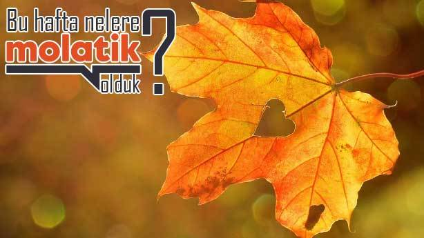 Molatik Gündem: Bu hafta nelere Molatik olduk? (24 Eylül 2021)