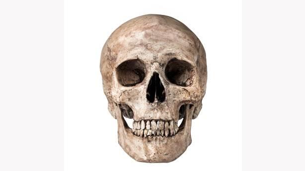 9. Conrad Kafatası