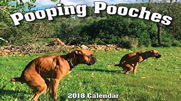 2018 Pooping Pooches