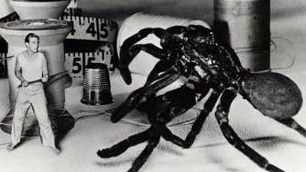 The Incredible Shrinking Man (Kendi Kendine K&uuml;&ccedil;&uuml;len Adam) - 1957 (IMDb: 7.6)<br /> &nbsp;