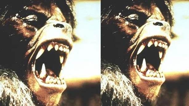 An American Werewolf in London (Kurt Adam Londra'da) – 1981