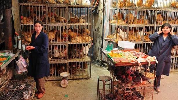 Çin'in kültürü farklı diye onlara istediğimiz her şeyi söyleme hakkımız yok...