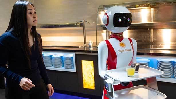 İnsansı robotlar<br /> &nbsp;