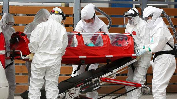 G4 H1N1 nedir?