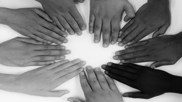 Etnik çeşitlilik