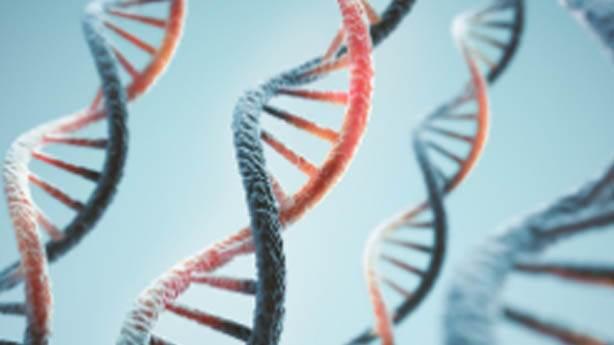 DNA ve RNA'lardan da öncesi