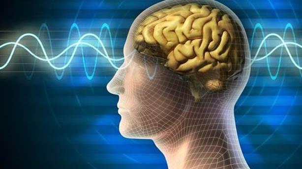 Beynimiz zevk alıyor mu?