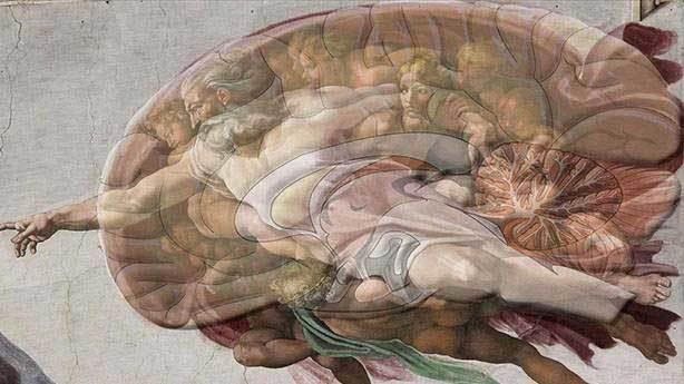 Michelangelo: Sistine Şapeli'nin anatomik şifresi