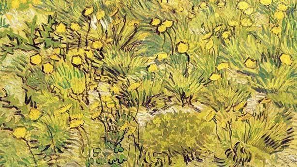 Vincent Van Gogh: Sarı renkli dünya