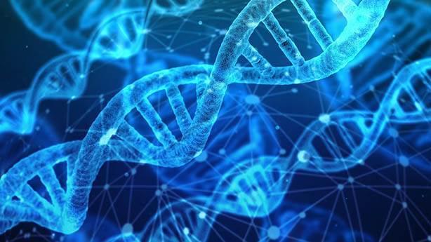 'DNA'mız ile oynanacak' korkusu