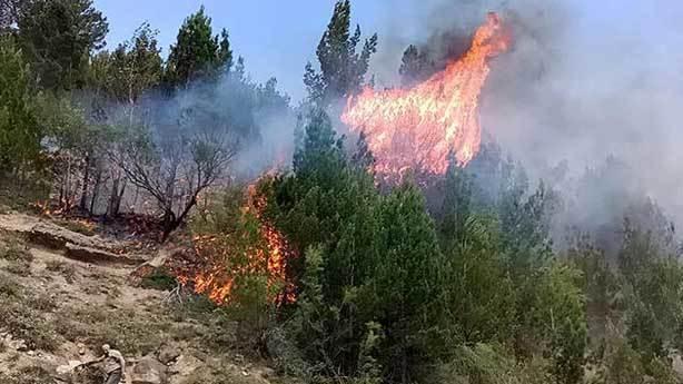 8- Yangın emniyet yolları