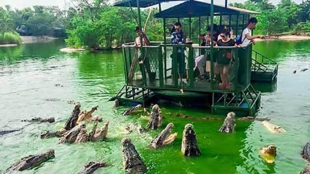 Fil Krallığı, Tayland
