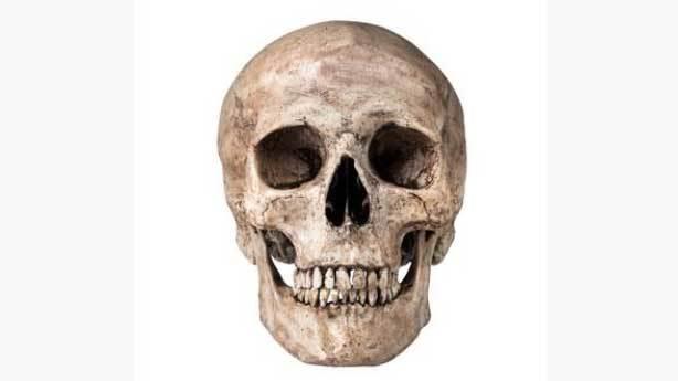 Conrad Kafatası