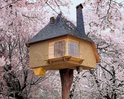Uzun Yaşam Garantili En Harika Ağaç Evler