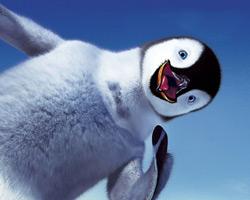 Antartika'da penguenler neden terler?