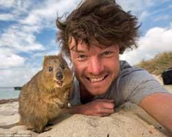 Hayvanlarla selfie çekilen adam