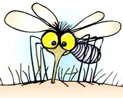 Yaz aylarının baş belası sivrisineklerden korunmanın 7 yolu