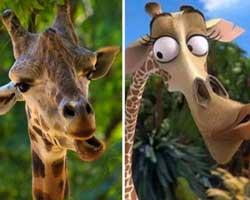 Çizgi film karakterlerine benzeyen hayvanlar...