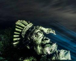 Amazon Ormanlarında müthiş bir görsel şölen