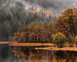 İskoçya'nın olağanüstü doğasından 18 kare