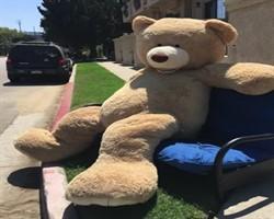 Ayı Teddy'nin alıcısının kim olduğuna inanamayacaksınız
