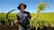 Tarımsal Destek Müjdesi