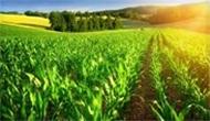 Çiftçi Kayıt Sistemine Kaydolan Desteği Alır!