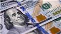 'Küresel ekonomide dolarsızlaşma devam edecek'