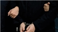 Muş'ta terör operasyonu: 21 gözaltı