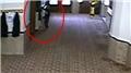 Camideki hırsızlık anı güvenlik kamerasında