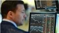 Finansal Hizmetler Güven Endeksi şubatta arttı