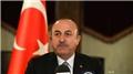 Dışişleri Bakanı Çavuşoğlu, Zambiyalı mevkidaşı Malanji ile görüştü