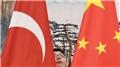 'Türkiye ve Çin, iş birliği alanlarını güncellemeli'